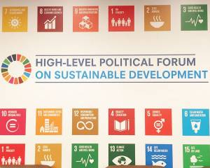 CIVICUS at the 2019 High Level Political Forum