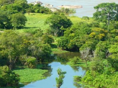 Orinoco mining arch: the crisis that few speak of in Venezuela